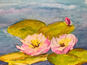 Two Water Lilies and a Bud