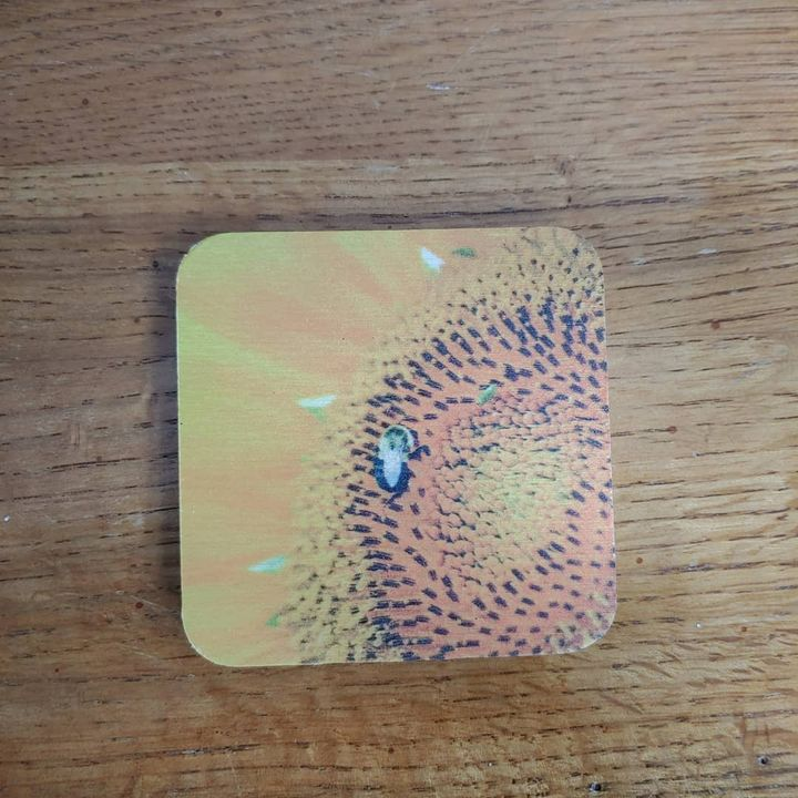 Bee on a Sunflower Magnet - Drgnfly Designs
