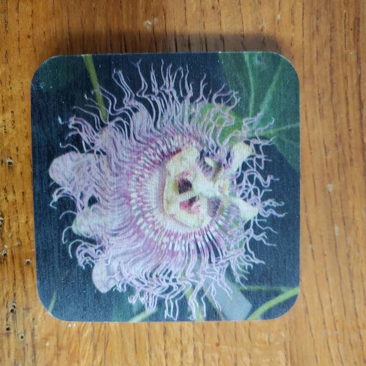 Passion Flower Magnet - Drgnfly Designs