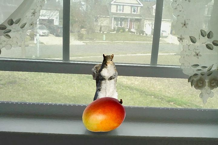 Mango and Squirrel - MannyBell