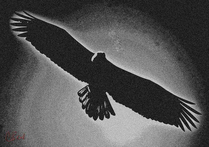 Eagle - MannyBell