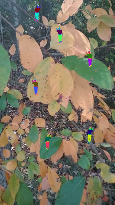Leaf Town - MannyBell