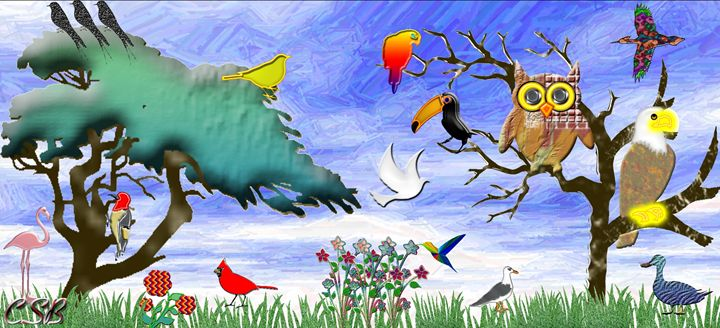 Land of Birds - MannyBell