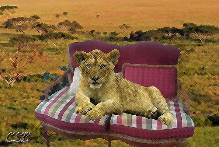 Relaxing Lion - MannyBell