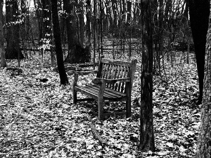 Forest Bench - Alejandro Gomez-Pamplona