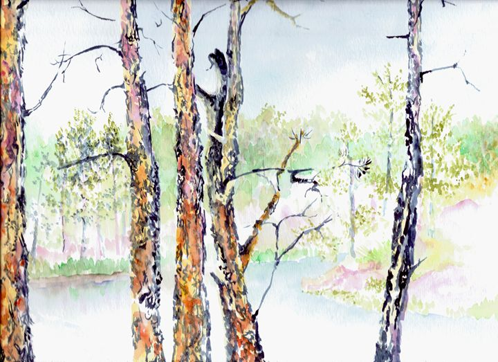 Bismarck Lake - Sketching Spot