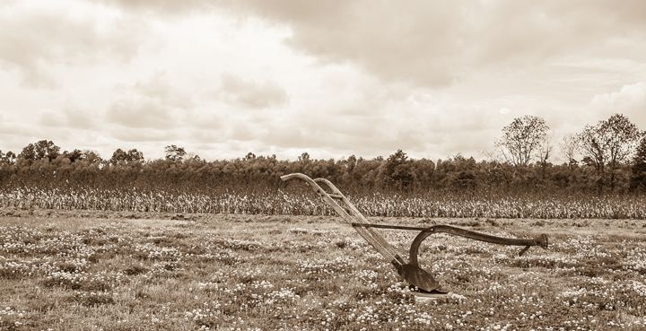 plow - Damion Poe Photography