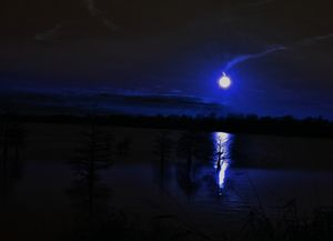 moon lit lake