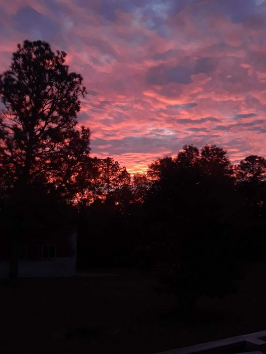 Red dawn in South Carolina - Dawn's Charm