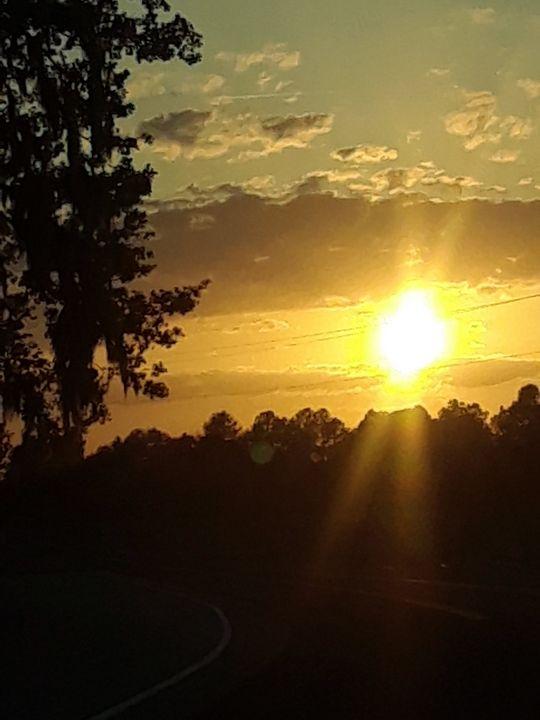 scenery of South Carolina - Dawn's Charm