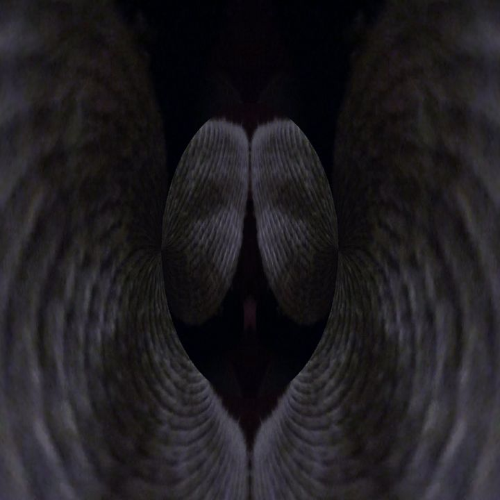 The angelic - Dawn of faith