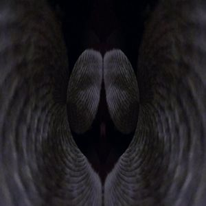 The angelic