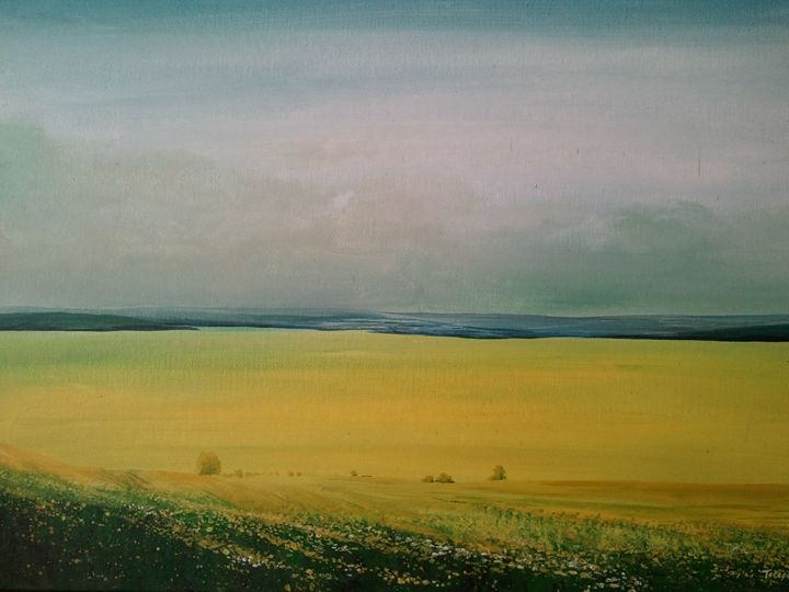 yellow meadow - Articorner