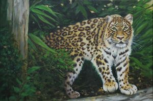 Forest Leopard, Oil on Canvas