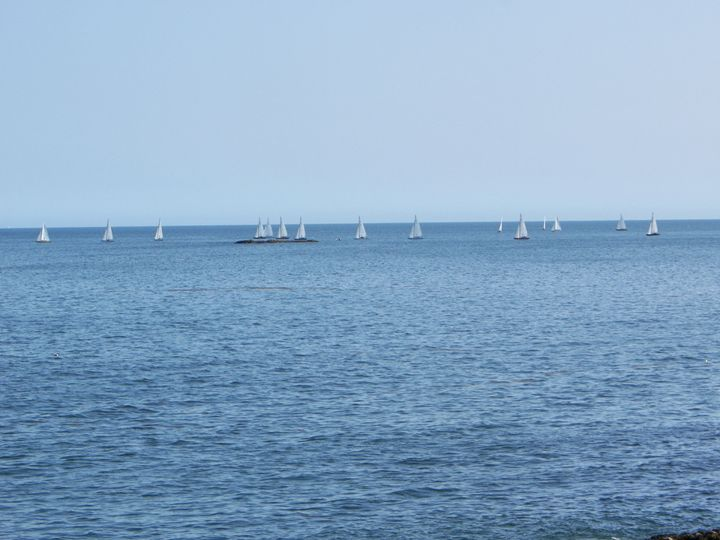 Sailboats on the Water - Corrin Broussard