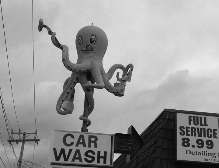 Octopus Car Wash - Evanne Deatherage