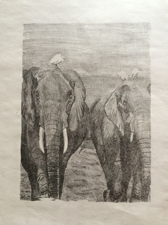 Elephant Walk - Evanne Deatherage