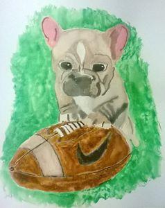 Football Puppy