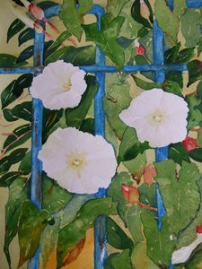 Convulvulus with Blue Railings