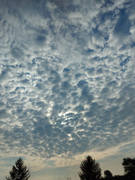 Morning sky - Shyanne Photography