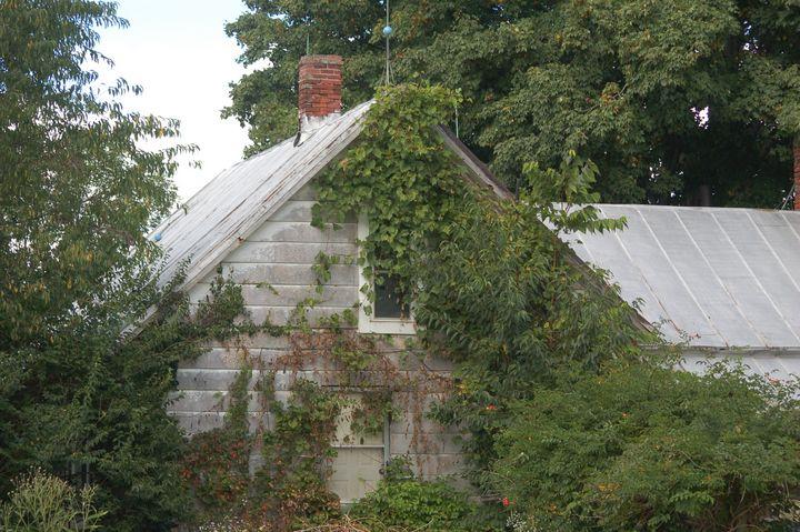 Tiny House - Shyanne Photography