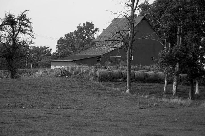 Farming Barn - Shyanne Photography