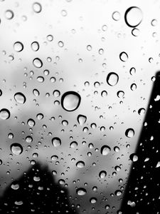 Rain drops on life