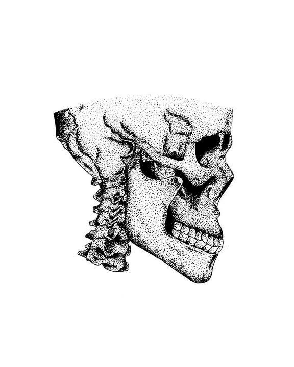 Skull Art Print - Olivart