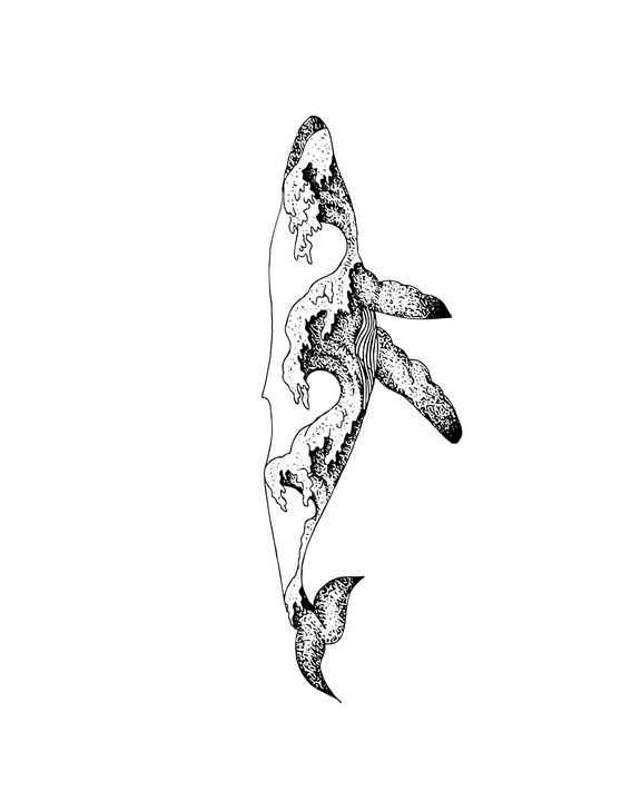 Whale Art Print - Olivart