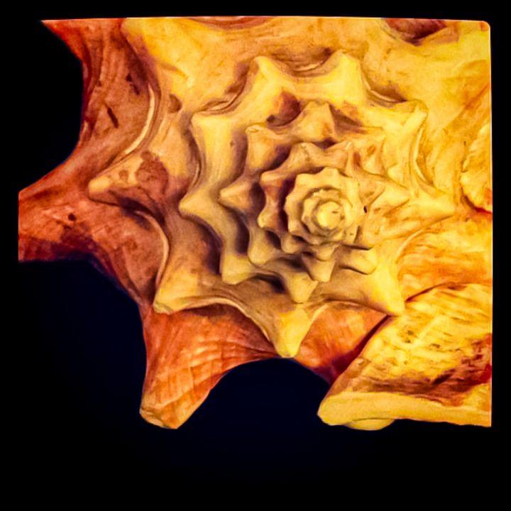 Queen Conch - Sisu Art