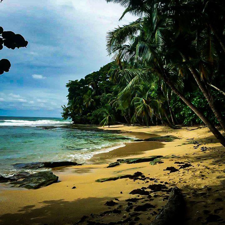 Costa Rica - Sisu Art