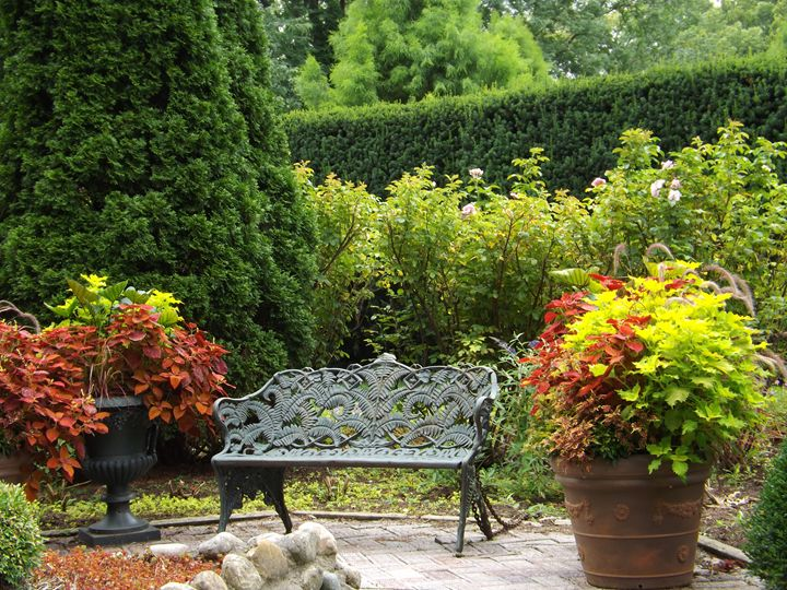 The garden - Beauty to see and feel
