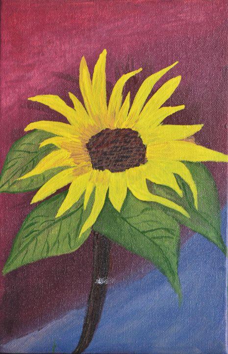 Sunflower - Shykti
