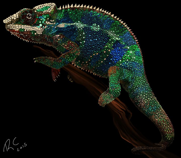 Colorful Chameleon - Robert Chapman Artworks