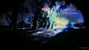 Light Becomes