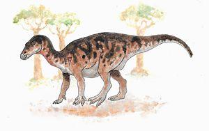 Iguanodon - Kayla Clifford
