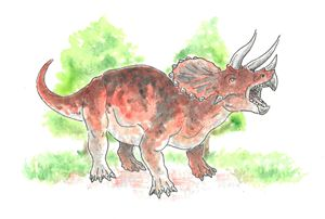 Triceratops - Kayla Clifford