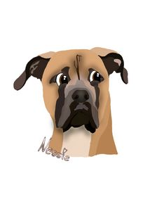 Customized Pet Cartoon