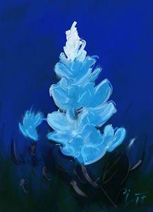 Lone Bluebonnet #1 - Clint Sawin