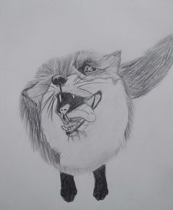 The smiling fox
