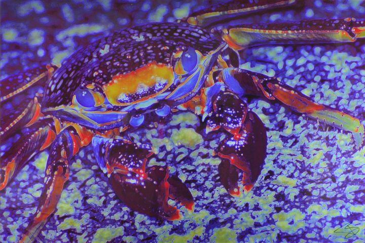 Crabby1200.00 - TBass Art