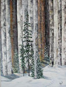 Birch Tracks