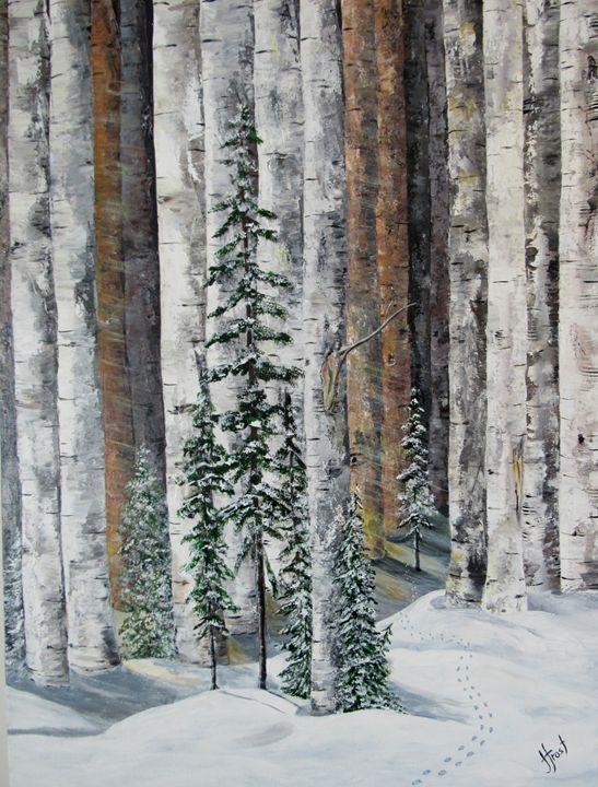 Birch Tracks - Jan Holmes Frost