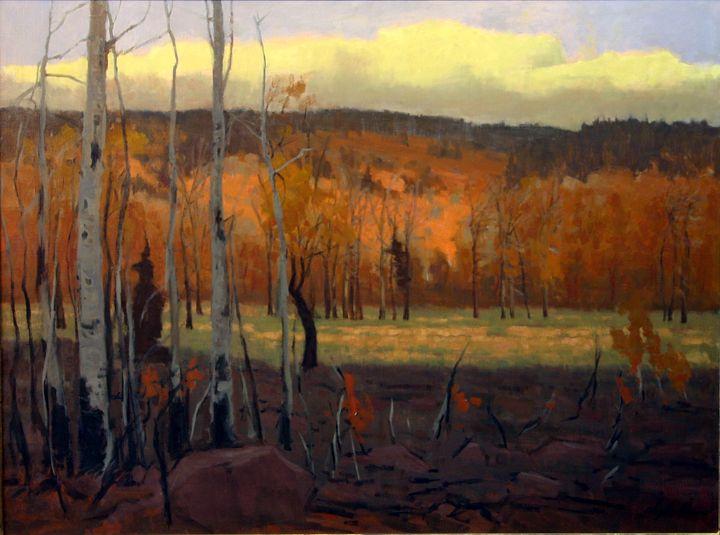 Seasonal Ecology Rough Wilderness - DoyleShaw