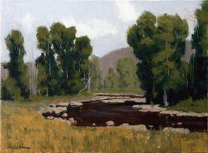 Kamas River Cottonwoods