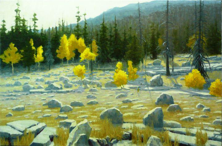 Boulder Strewn Mountain Meadow - DoyleShaw