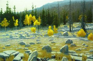 Boulder Strewn Mountain Meadow