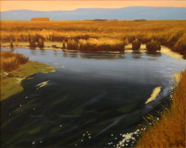 Tranquil Wetlands - DoyleShaw