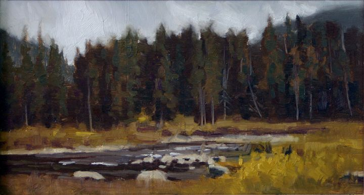 Forest and River Field Sketch - DoyleShaw