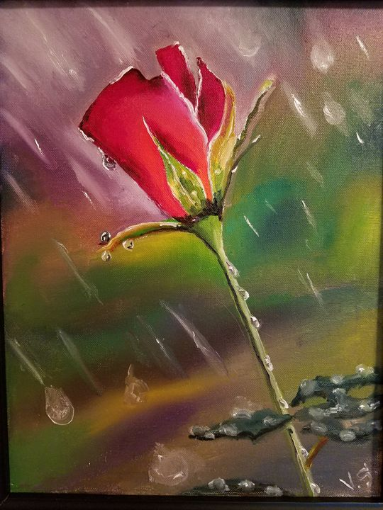 Rose in the Rain - Vlad Solomaha